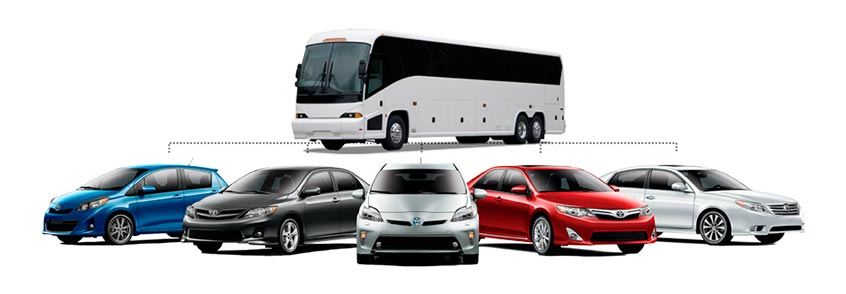 Car/Coaches Rental