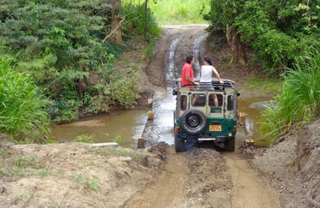 Jeep Safari, Kaziranga Jungle