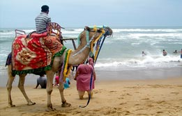 Puri Beach Tour